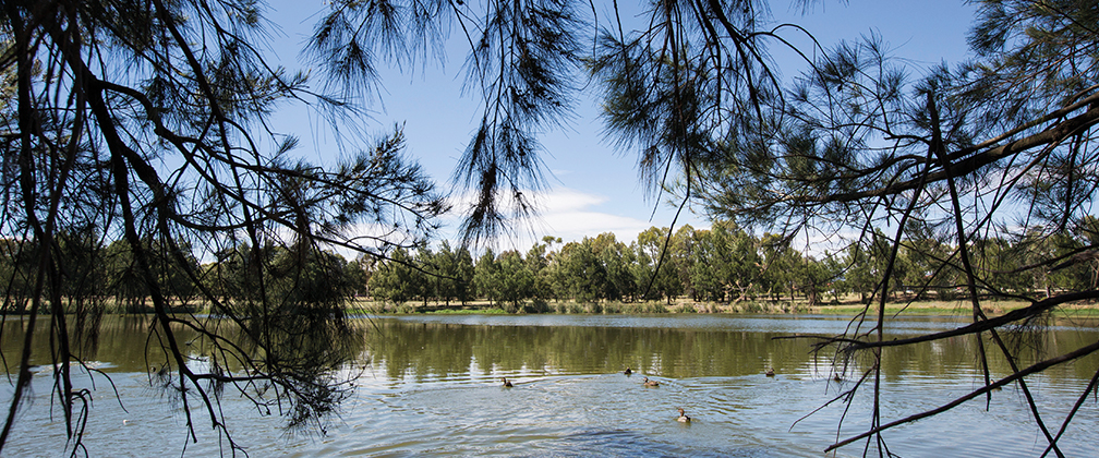 Lake-Tuggeranong-ACT