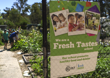 Image of school food garden entrance